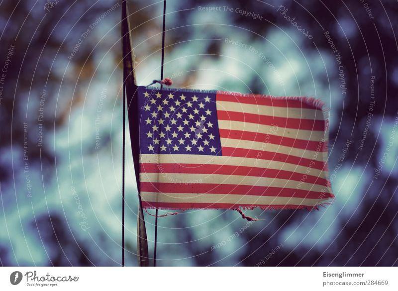 [wpt HH 10.12] Stars & Stripes Fahne Stars and Stripes trist blau rot Macht Einigkeit Hoffnung träumen Stolz Freiheit Kultur Wahlkampf Präsident Nationalflagge