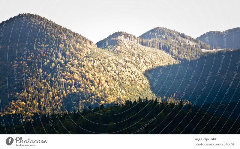 Hinter den Bergen Umwelt Natur Landschaft Herbst Schönes Wetter Wald Hügel Berge u. Gebirge Rumänien Siebenbürgen Abenteuer ruhig Ferne Nadelwald Sonne Farbfoto