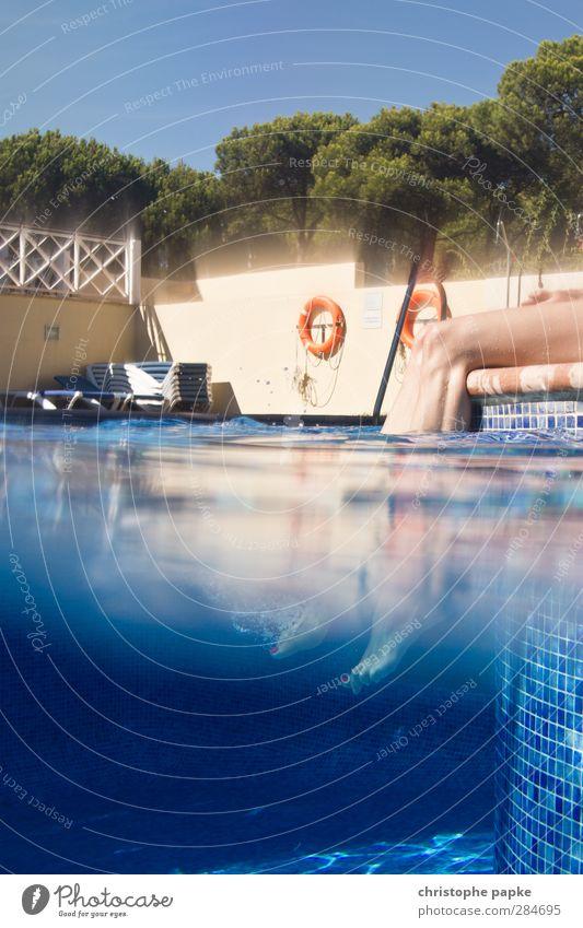 halb und halb Ferien & Urlaub & Reisen Sommer Baum Sonne Erholung Beine Fuß Schwimmen & Baden sitzen Zufriedenheit Schwimmbad Wellness Sommerurlaub Erfrischung