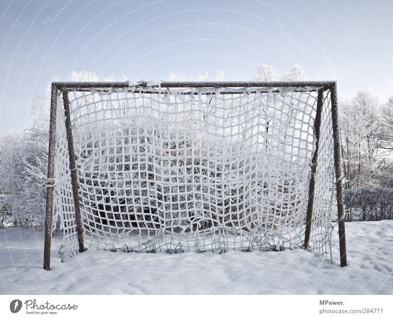 tor Himmel blau Sonne Baum Winter kalt Schnee Beleuchtung Horizont Eis Feld Fußball Frost Ast gefroren Netz