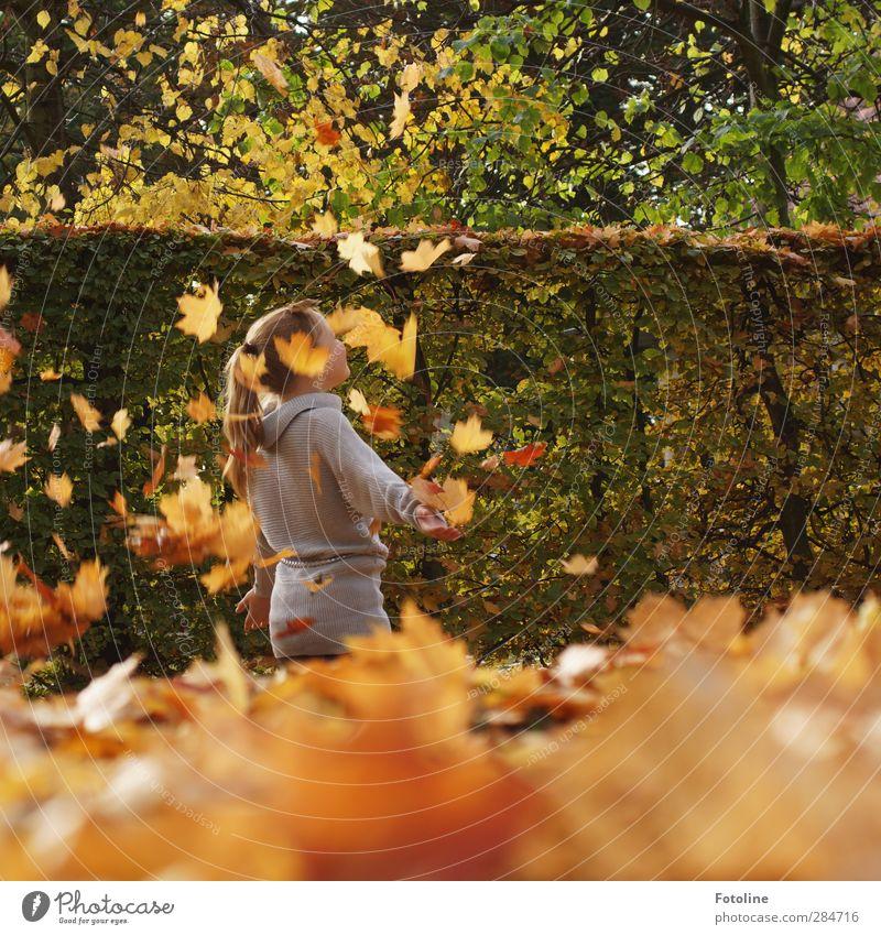So viel Spaß macht der HERBST!!! Mensch feminin Kind Mädchen Kindheit Körper Haut Kopf Haare & Frisuren Arme Umwelt Natur Pflanze Herbst Schönes Wetter