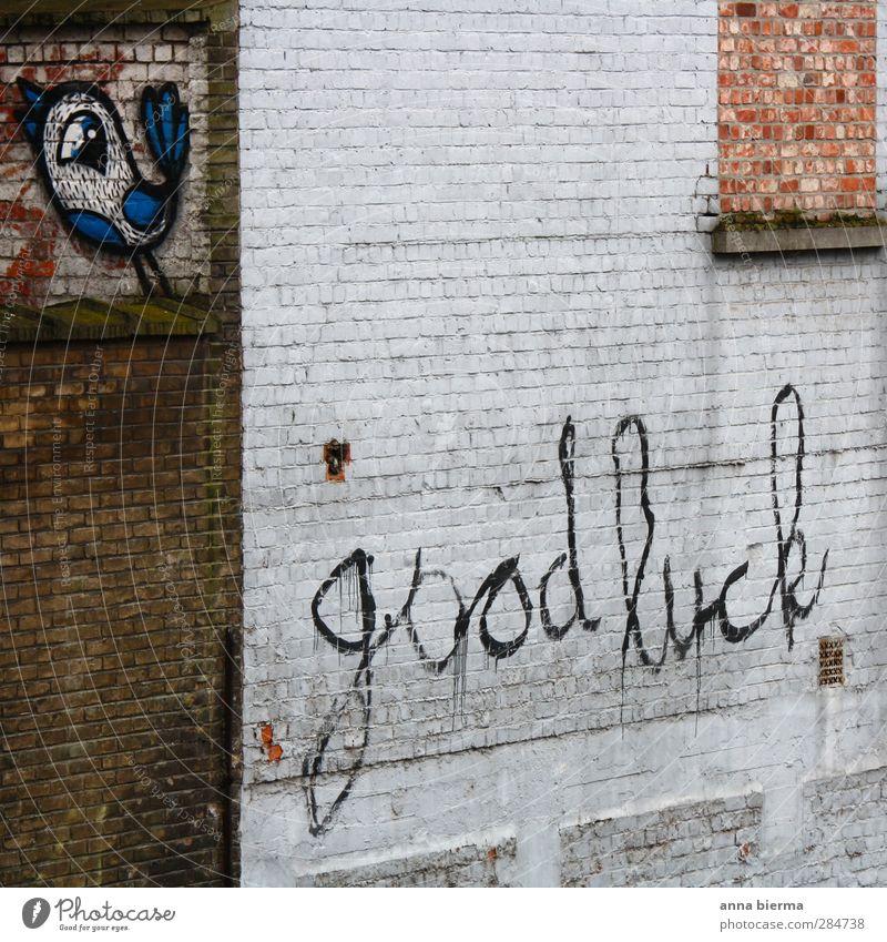 good luck Stadt Graffiti Wand Mauer Glück Kunst Vogel Kraft Erfolg Lächeln Schriftzeichen Beginn Zukunft Hoffnung Zeichen Backstein