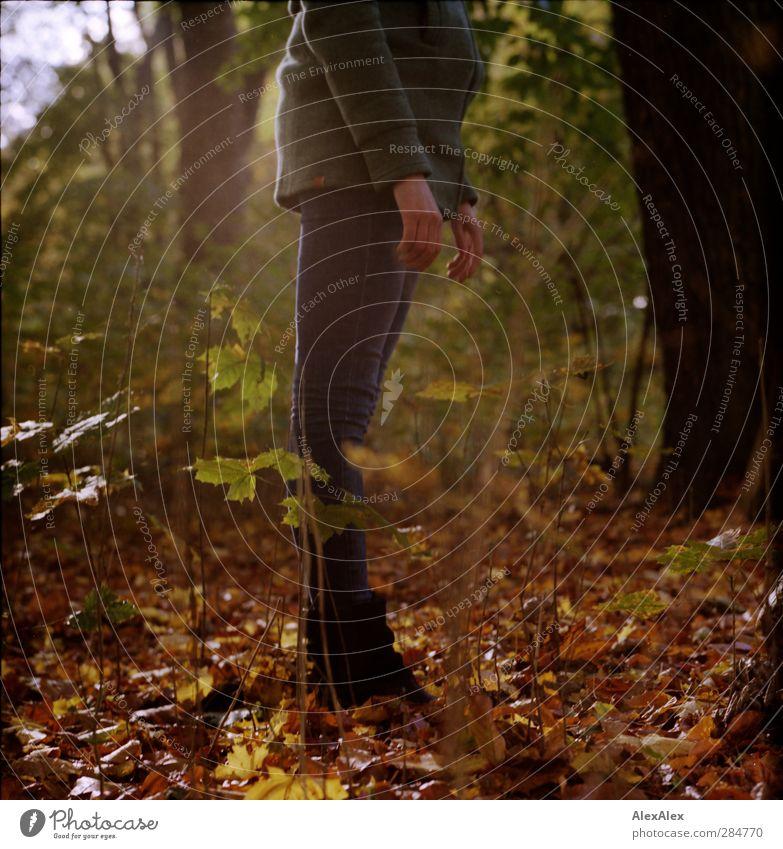 [wald-photo-tour HH] zu gross für das 50mm Junge Frau Jugendliche Hand Beine 1 Mensch 18-30 Jahre Erwachsene Pflanze Baum Sträucher Blatt Wald Park Mantel