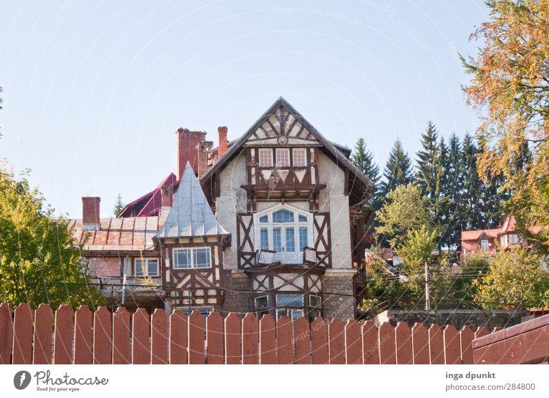 Dorfidylle Umwelt Natur Garten Siebenbürgen Rumänien Menschenleer Haus Einfamilienhaus Gebäude Fachwerkfassade Fachwerkhaus einzigartig Tourismus Idylle