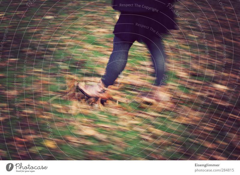 [wpt HH 10.12] Laubspaziergang Mensch Frau Freude Blatt Erwachsene Wiese kalt Herbst feminin Bewegung Beine Fuß Schuhe Spaziergang Lebensfreude Rock