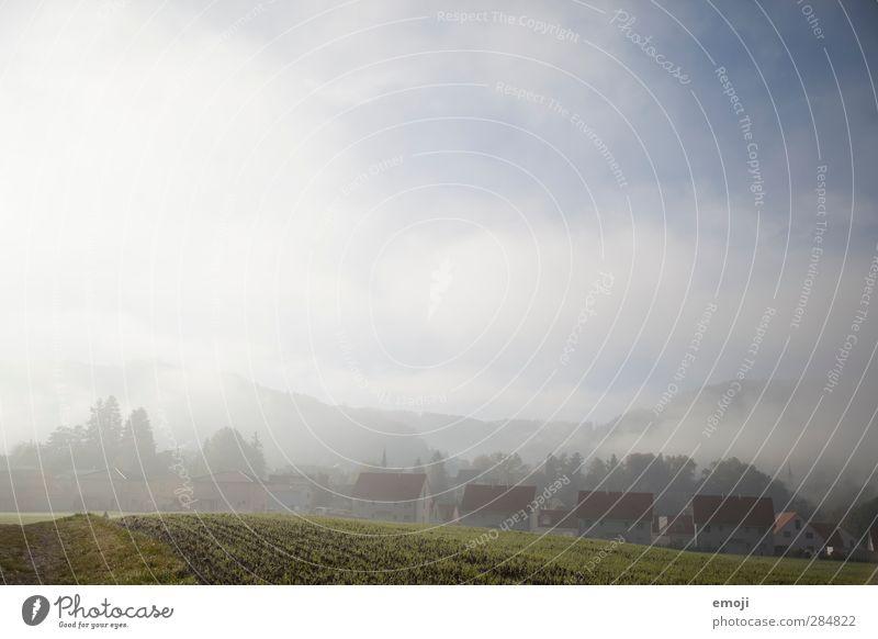eingereiht Umwelt Erde Himmel Herbst Nebel Wiese Feld Dorf Haus natürlich weiß Nachbar Viertel Farbfoto Außenaufnahme Menschenleer Textfreiraum oben Tag Licht