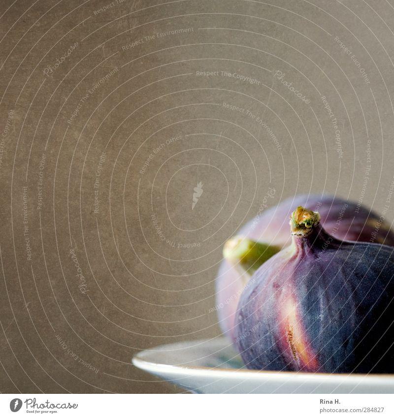 Feigen Frucht Lebensmittel frisch Ernährung genießen lecker Teller Vegetarische Ernährung