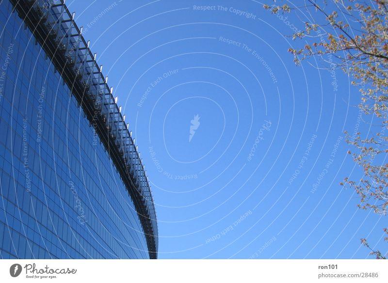 OFFICE Gebäude Baum Reflexion & Spiegelung Architektur Glas Himmel blau fasade glasfasade
