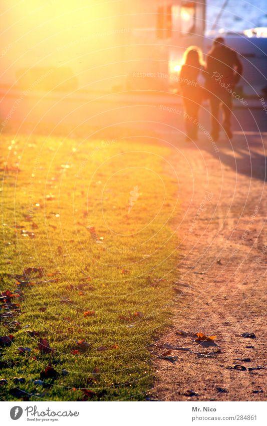 UT Köln | into the sun Frau Erwachsene Mann Paar 2 Mensch Umwelt Frühling Sommer Herbst Gras Park Fußgänger Wege & Pfade gehen Vertrauen Sympathie Freundschaft