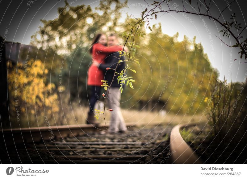 Im Mittelpunkt Mensch Jugendliche grün weiß Pflanze rot schwarz Erwachsene gelb Liebe Junge Frau feminin Leben Junger Mann 18-30 Jahre Paar