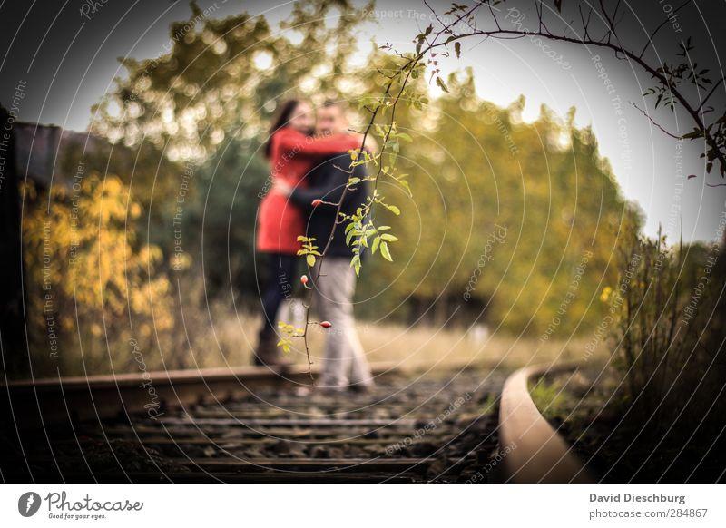 Im Mittelpunkt Mensch maskulin feminin Junge Frau Jugendliche Junger Mann Paar Partner Leben 2 18-30 Jahre Erwachsene Pflanze Rose braun gelb grün rot schwarz