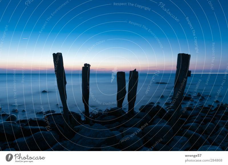 Morgendämmerung am Kap Landschaft Wasser Himmel Wolkenloser Himmel Stern Horizont Sonnenaufgang Sonnenuntergang Frühling Wellen Küste Strand Ostsee kalt blau