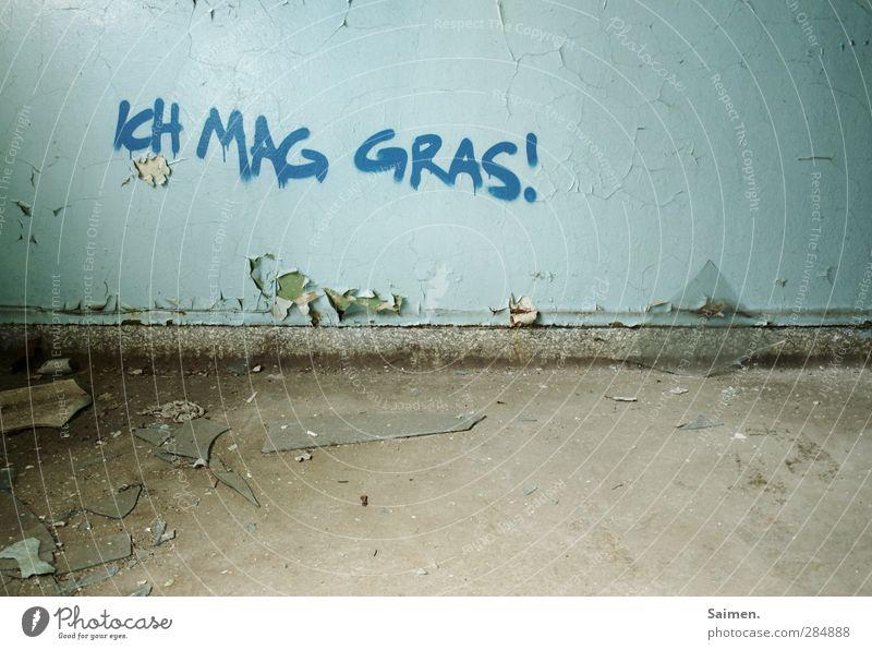 ich mag gras Haus Mauer Wand Sucht Gras Graffiti Ecke Strukturen & Formen dreckig alt verfallen Verfall mögen Farbstoff Bodenbelag Rauschmittel Rauchen