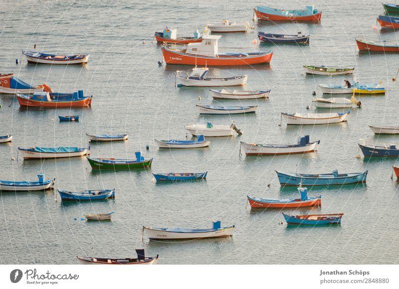 Boote vor Teneriffa Ferien & Urlaub & Reisen Sommer blau Wasser weiß rot Meer Erholung ruhig Reisefotografie Tourismus Wasserfahrzeug entdecken Hafen viele