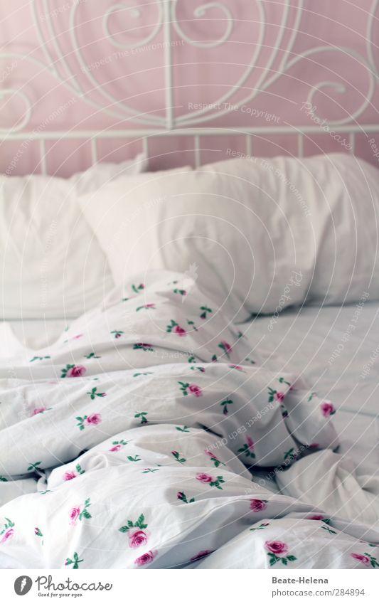 Rosige Nächte Ferien & Urlaub & Reisen weiß rot Erholung Liebe Wärme Gefühle träumen liegen rosa elegant Häusliches Leben Lifestyle Warmherzigkeit ästhetisch schlafen