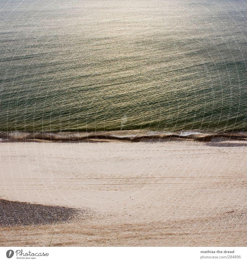 STRAND Umwelt Natur Sand Wasser Sonnenlicht Schönes Wetter Wellen Küste Strand Nordsee nass Brandung Stein Spuren Menschenleer ruhig Idylle Sonnenuntergang
