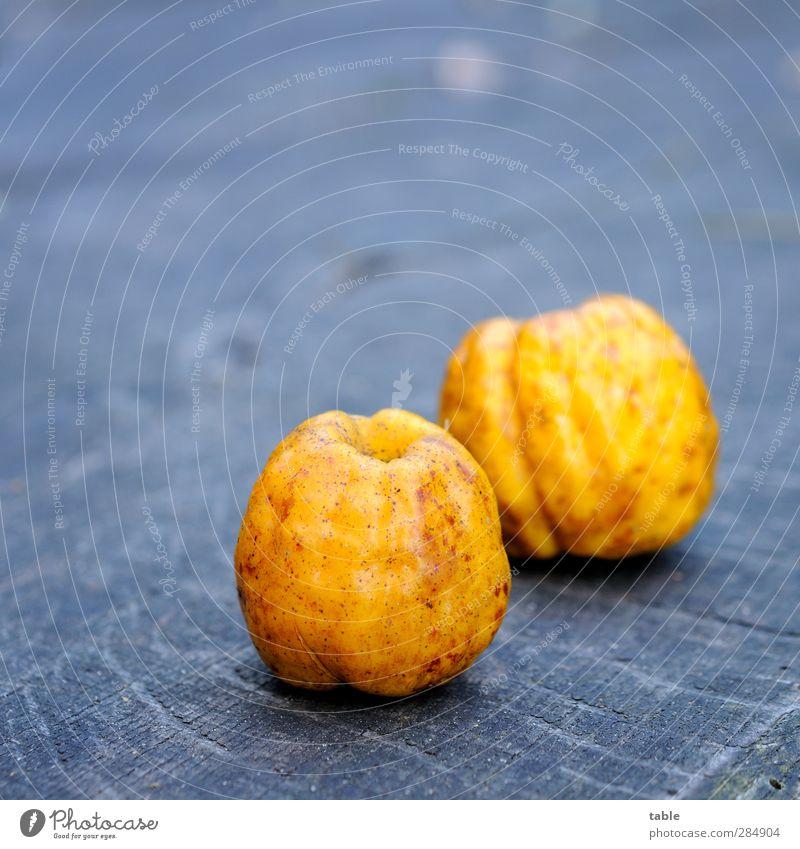 Schrumpelobst Lebensmittel Frucht Quitte Ernährung Vegetarische Ernährung Gesunde Ernährung Umwelt Natur Herbst Pflanze Nutzpflanze Garten Holz Duft liegen