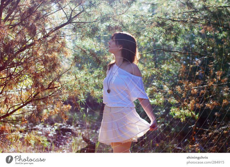 fairy tale feminin Junge Frau Jugendliche Erwachsene 1 Mensch 18-30 Jahre 30-45 Jahre Umwelt Natur Sonnenlicht Schönes Wetter Baum Wald Mode T-Shirt Rock