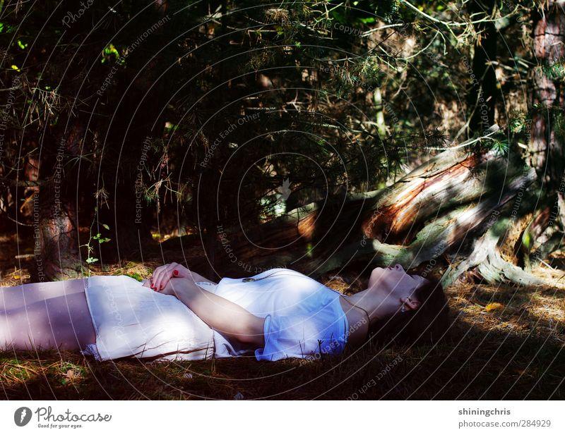 nach dem apfel Mensch Frau Jugendliche Baum Wald Erwachsene Junge Frau Herbst Tod feminin 18-30 Jahre liegen Körper Trauer Märchen 30-45 Jahre