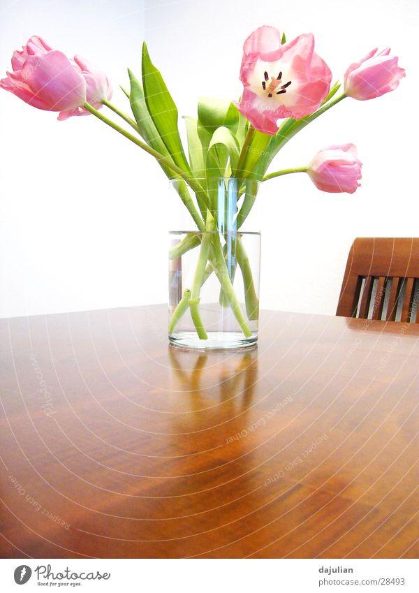 Bright Flowers weiß Blume Holz Tisch Bank Innenarchitektur Tulpe