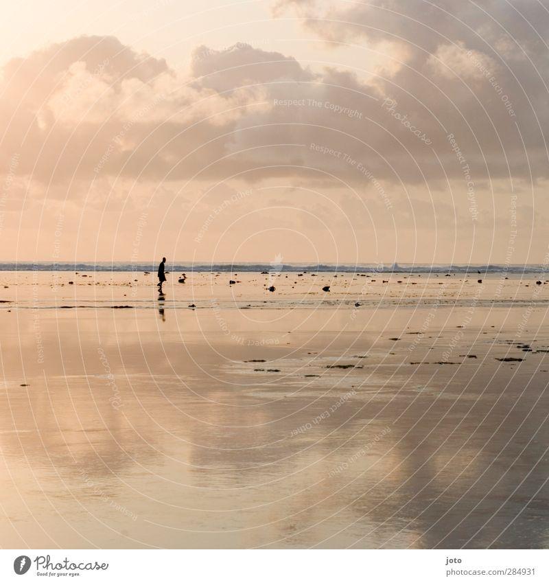ich gehe meinen weg Meer entdecken genießen Unendlichkeit Stimmung Zufriedenheit Lebensfreude Mut Tatkraft Leidenschaft Verschwiegenheit Vorsicht Gelassenheit