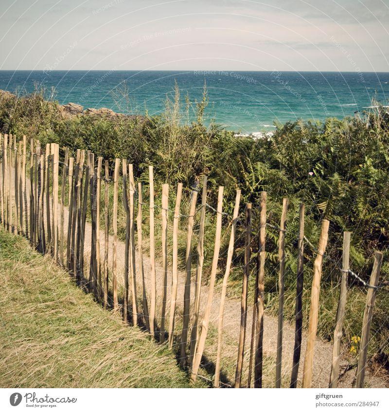 privatstrand Umwelt Natur Landschaft Urelemente Wasser Himmel Horizont Sommer Schönes Wetter Pflanze Gras Sträucher Wiese Wellen Küste Strand Meer Insel