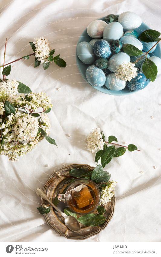 Natürlich gefärbte osterblaue Eier und Teetasse, Frühstück schön Dekoration & Verzierung Feste & Feiern Ostern Blume grün weiß Tradition Hintergrund