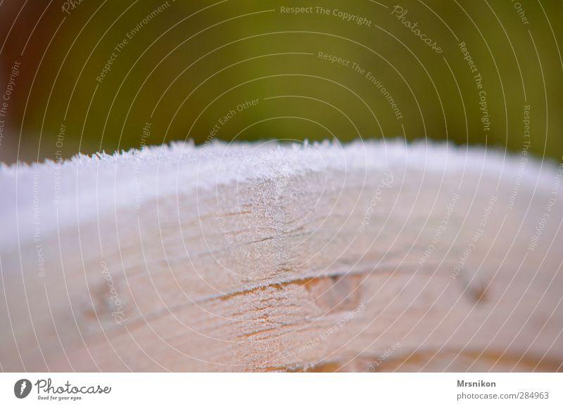Holz mit Eis Umwelt Natur Sonnenaufgang Sonnenuntergang Herbst Winter Klima Schönes Wetter Frost Schnee Park Wald Brücke Eisblumen Eiskristall gefroren