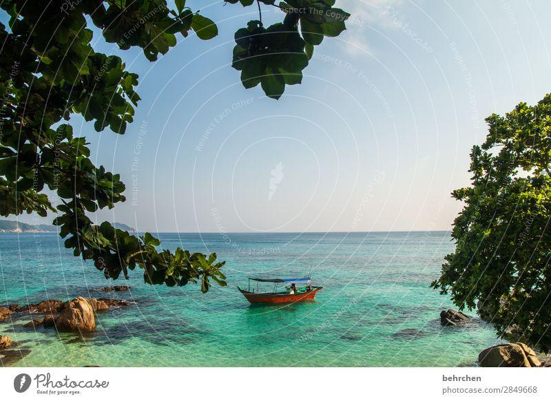 wenn die zeit still steht Ferien & Urlaub & Reisen Landschaft Baum Meer Blatt ruhig Ferne Strand Küste Tourismus außergewöhnlich Freiheit Ausflug Wellen Insel