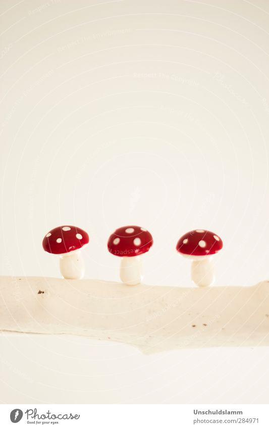 Dreimal Glück schön weiß rot Leben klein hell Wohnung Häusliches Leben Lifestyle Dekoration & Verzierung Fröhlichkeit Zukunft niedlich Hoffnung Lebensfreude