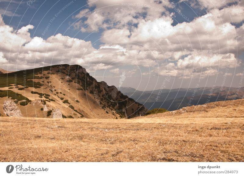 Oben! Natur Pflanze Landschaft Ferne Umwelt Berge u. Gebirge Gras oben wandern Tourismus Sträucher Abenteuer Gipfel Aussicht Umweltschutz Hochgebirge