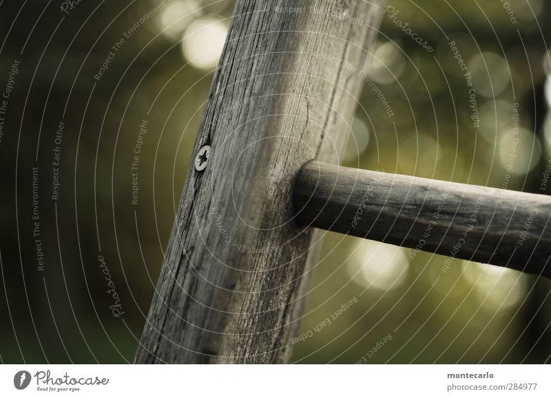 sitzt-passt-und wackelt nicht Leiter Schraube Strebe Holz Metall alt dreckig dünn authentisch einfach rund trist grau Farbfoto mehrfarbig Außenaufnahme