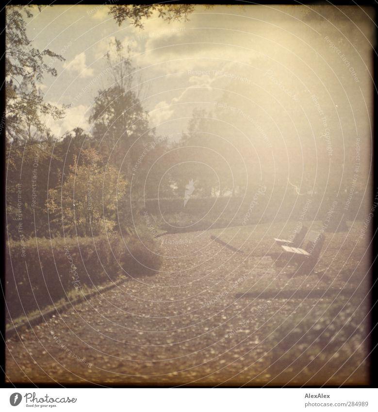[wald-photo-tour-hh] Sonnenbank Tourismus Ausflug Sightseeing Landschaft Wolken Herbst Baum Gras Sträucher Park Wiese Parkbank Stein Beton Wege & Pfade Bewegung