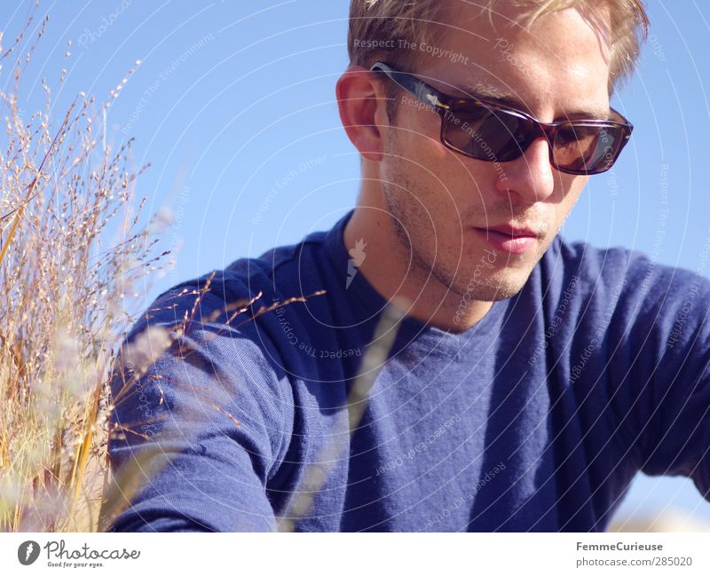 Sonnenstrahlengenießer. Mensch Natur Mann Jugendliche blau Ferien & Urlaub & Reisen Erholung Erwachsene Wärme Herbst Gras Junger Mann Kopf Denken 18-30 Jahre
