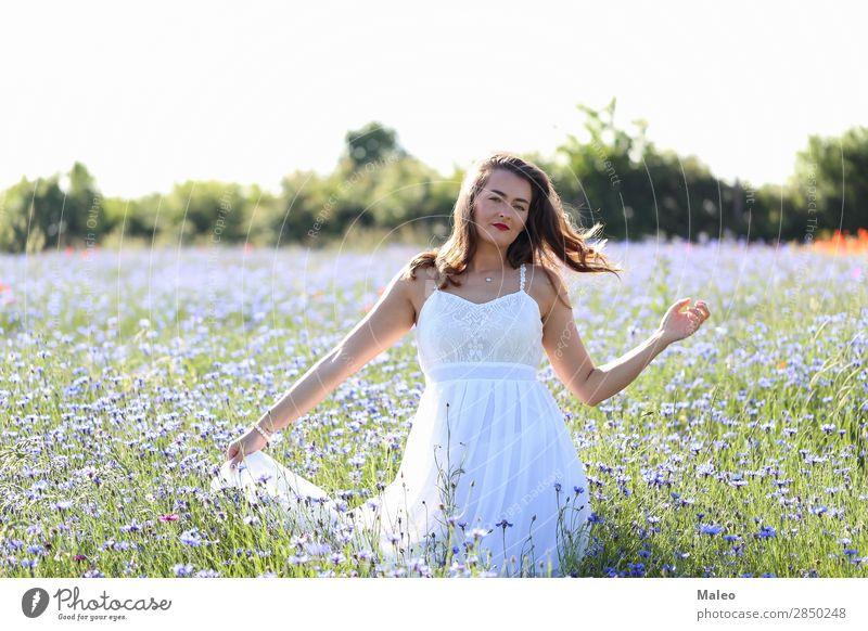 Porträt einer jungen Frau auf einem Kornblumefeld schön blau Mädchen Haare & Frisuren Glück Junge Frau Blumenstrauß Feld Model Natur Frühling Sommer attraktiv