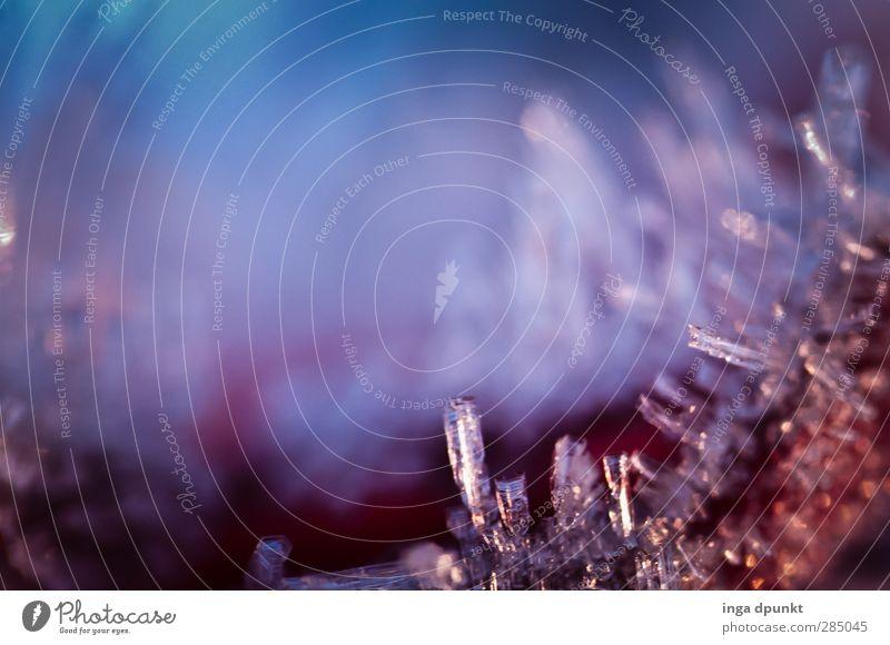 Kristallin Umwelt Urelemente Wasser Winter Klima Wetter Eis Frost Eiskristall Raureif frieren kalt rein Kristallstrukturen gefroren Reflexion & Spiegelung