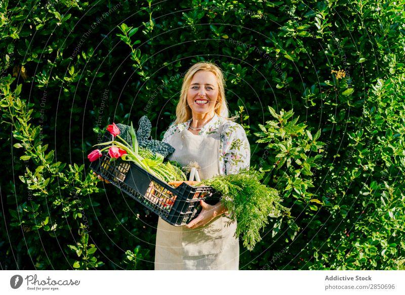 Frau mit Gemüse in der Box Kasten Lebensmittel Erwachsene heiter frisch Sale Einzelhandel organisch grün Kunde kaufen Markt Paket schön Container Fressen lecker