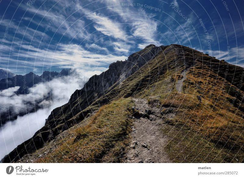 das ist ja der Gipfel Himmel blau grün Pflanze Sonne Wolken Landschaft Berge u. Gebirge Herbst Gras Felsen braun Wetter Nebel Schönes Wetter
