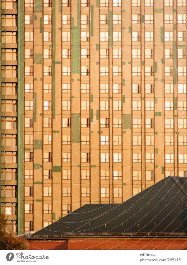 Fassadenbegrünung Haus Hochhaus Bauwerk Gebäude Architektur Plattenbau Fenster Dach hoch kaputt Stadt orange Verfall Fassadenverkleidung Fassadennetz Reparatur