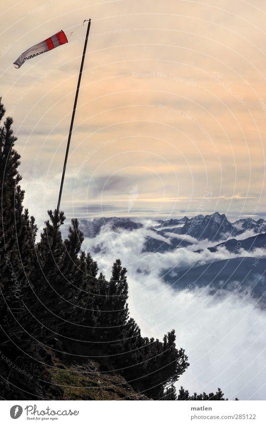 trend-setting Landschaft Pflanze Himmel Wolken Horizont Sonnenaufgang Sonnenuntergang Herbst Wetter Nebel Baum Gras Moos Felsen Berge u. Gebirge Gipfel