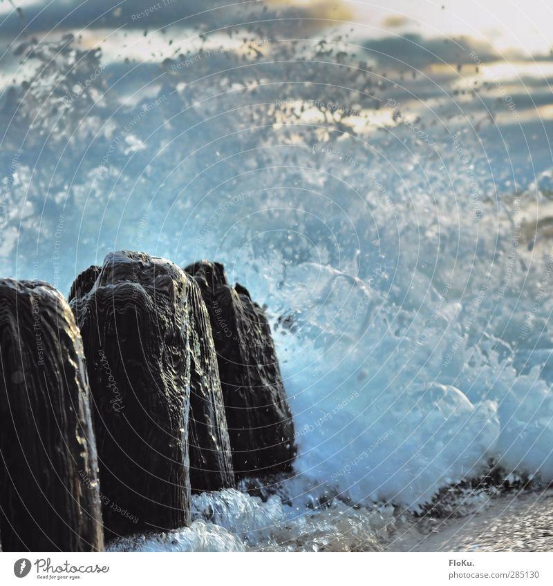 unbändige Nordsee Ferien & Urlaub & Reisen Ferne Meer Insel Wellen Umwelt Natur Urelemente Wasser Wassertropfen Klima Klimawandel Sturm Küste Strand Holz