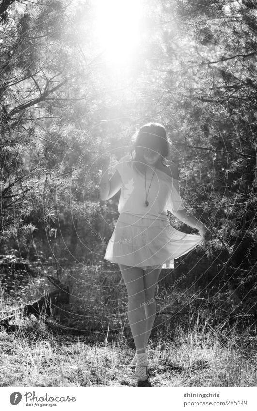 traumtanzen feminin Junge Frau Jugendliche 1 Mensch 18-30 Jahre Erwachsene Sonnenlicht Herbst Schönes Wetter Baum Wald T-Shirt Rock Accessoire stehen Tanzen