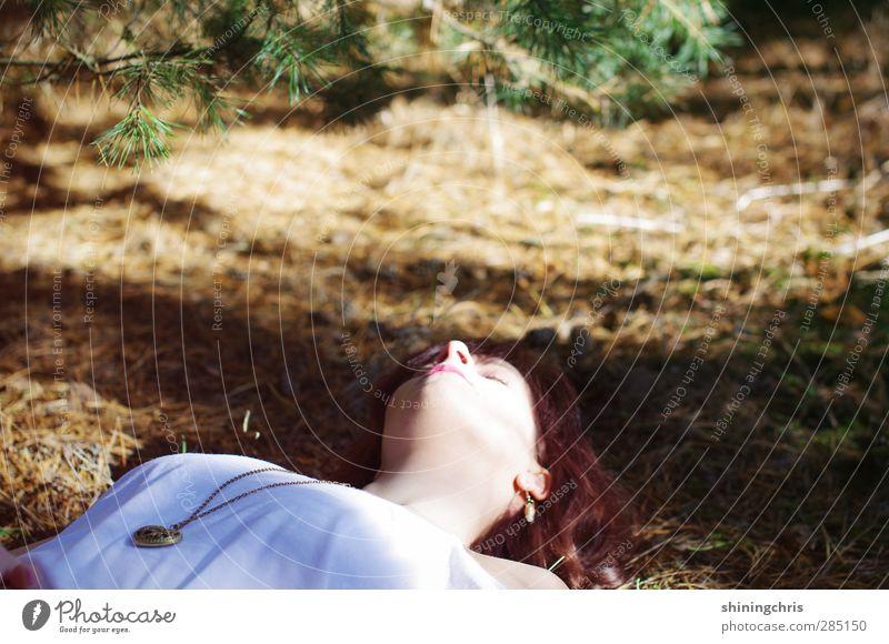 schönheitsschlaf feminin Junge Frau Jugendliche Gesicht 1 Mensch 18-30 Jahre Erwachsene Natur Herbst Schönes Wetter Tannenzweig Tannennadel Wald Herz liegen