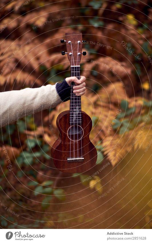 Hand mit Ukulele im Wald Gitarre klein Musik Natur akustisch Instrument Musical Spielen Gitarrenspieler Länder Musiker Schnur schön Holz klassisch romantisch