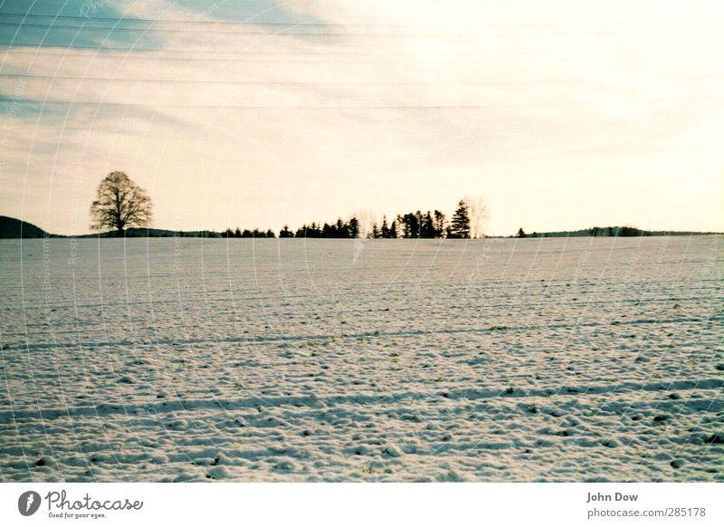 Winter Himmel Baum Landschaft Ferne Wiese kalt Schnee Horizont Eis Feld Sträucher Frost Schneelandschaft Furche Winterstimmung