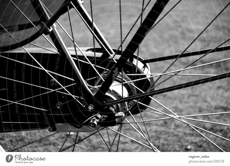 wheel Gazellen Fahrrad Freizeit & Hobby primeur Schwarzweißfoto Kontrast Speichen