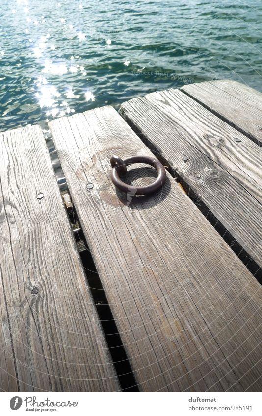 Planken Piercing Landschaft Wasser Schönes Wetter Seeufer Bootsfahrt Holz Metall Schwimmen & Baden Erholung ästhetisch stark grün Kraft Sicherheit ruhig Fernweh