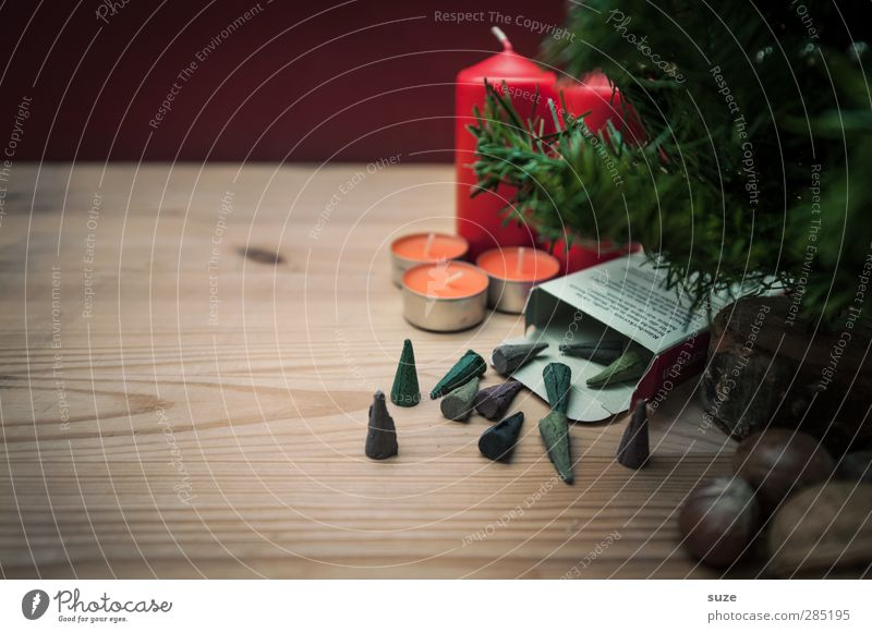 Die Wichtel sind los. Dekoration & Verzierung Feste & Feiern Weihnachten & Advent Kerze Holz authentisch Duft schön Kitsch klein natürlich braun grün rot