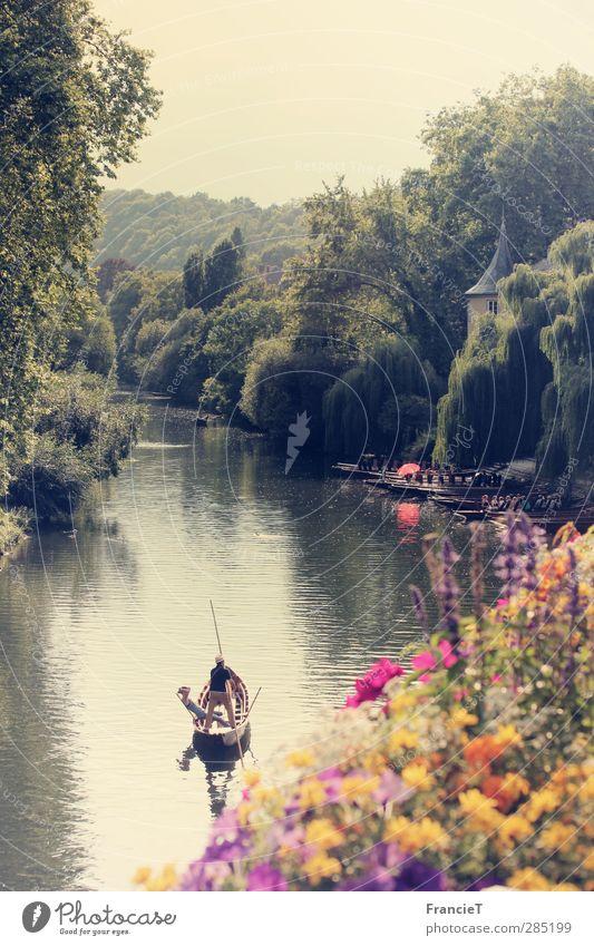 Tübingen Ferien & Urlaub & Reisen Tourismus Ausflug Sightseeing Städtereise Sommer Sonne Natur Landschaft Wasser Schönes Wetter Baum Blume Blüte Park Fluss