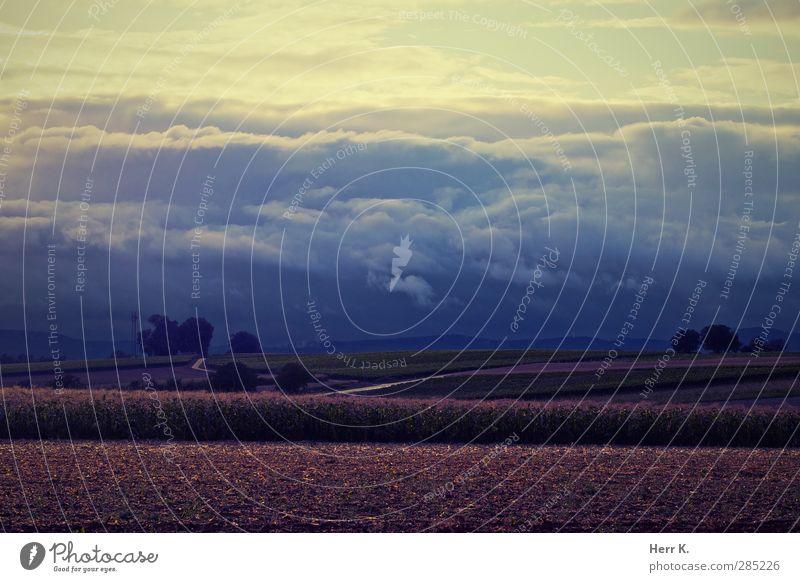 Dawn Wave Landschaft Himmel Wolken Gewitterwolken Horizont Herbst schlechtes Wetter Feld Hügel ästhetisch ruhig Stimmung Gedeckte Farben Außenaufnahme